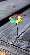 Chrome Flower