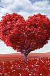 Heart Tree Hd